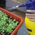 best sprayers for the garden
